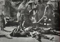 """Sự Thật Về """"Đế Quốc Việt Nam"""""""